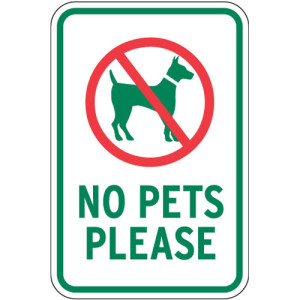 Keep Pets Away   Prepare Your Home to Sell   First Time Home Buyer Calgary